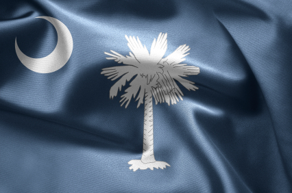 Just like the mon watches over the palm tree, South Carolina is watching your insurance policy.