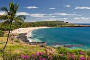Hawaii car insurance